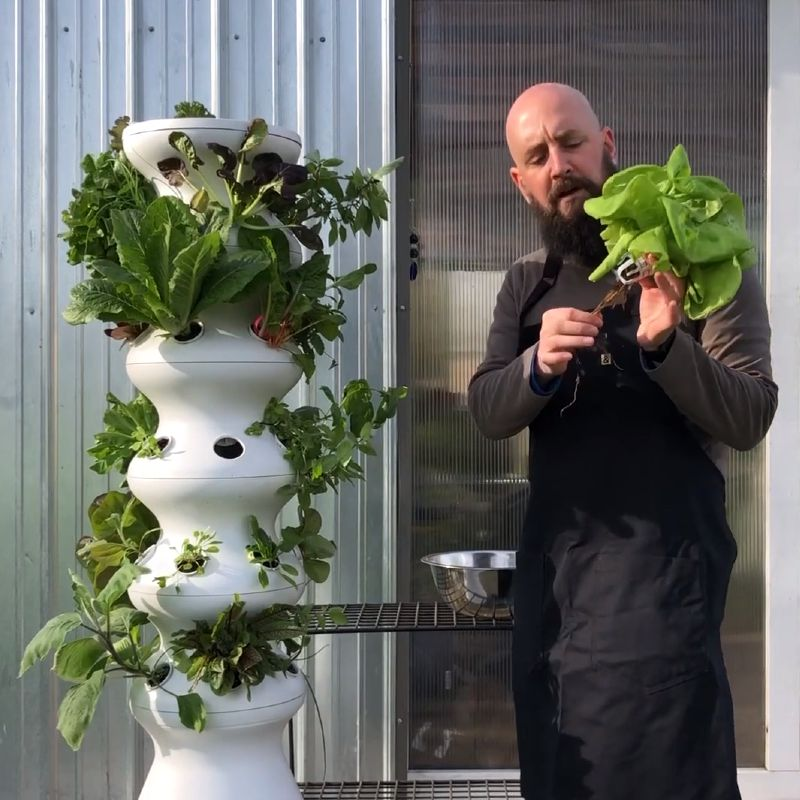 LettuceGrow Farmstand vegetable fruit tower