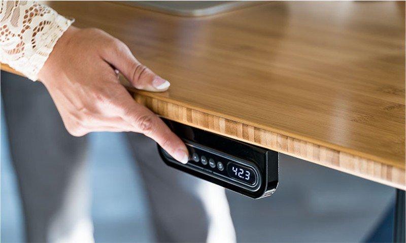 xdesk bamboo standing desk adjustable